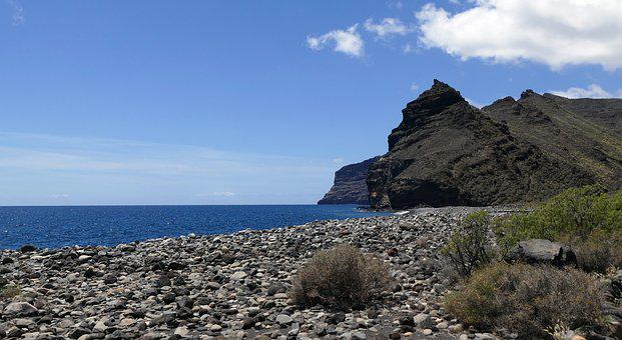 La Reptiles, Canary Island, Island, Canary Islands