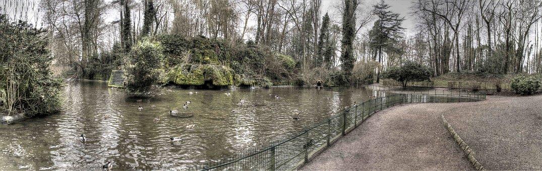Public Garden, St Omer, Ducks
