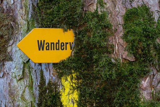 Trail, Directory, Switzerland, Signposts, Direction