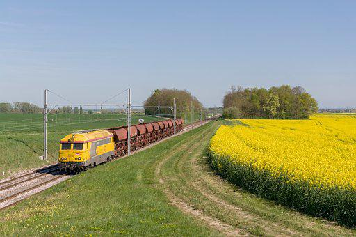 Train, Bb 67200, Rapeseed, Below, Ballast