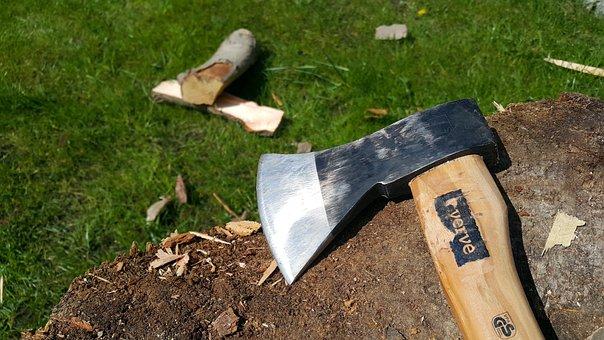 Ax, Log, Wood, Tool, Tree, Equipment, Work, Forest