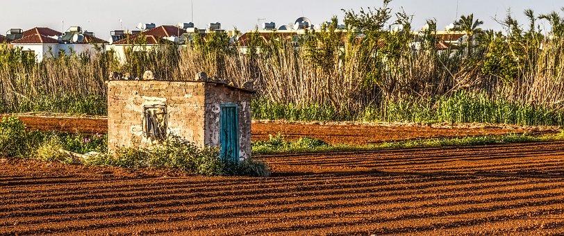 Shanty, Field, Farm, Hut, Landscape, Countryside, Rural