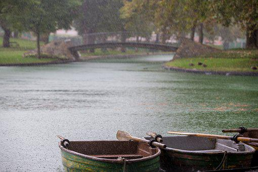 Row Boats, Rainy Day, Rain, Rain Drops, Park, Bridge
