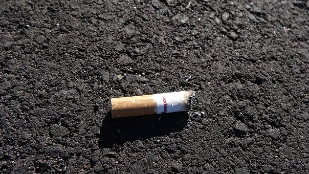 Cigarette Butt, Pavement, Road, Litter, Asphalt