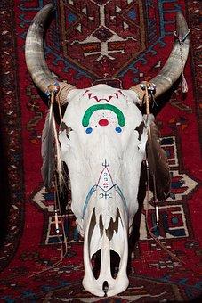 Skull, Beef, Painted, Horn, Bone, Cattle Skull