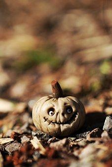 Pumpkin, Miniature, Macro, Season, Tiny, Small