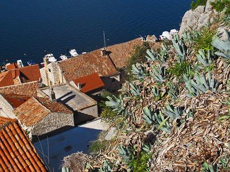 Split, Croatia, Sea, Seaview, Vegetation, Mediterranean