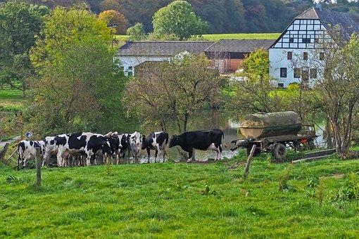 Landscape, Farm, Nature, Agriculture, Meadow, Farmhouse