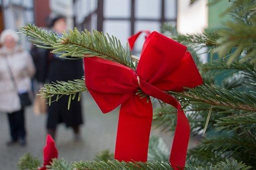 Loop, Christmas, Fir, Christmas Tree