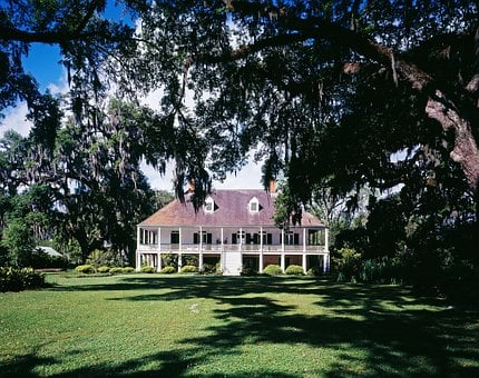 Farm, Plantation, Louisiana, Cotton Plantation