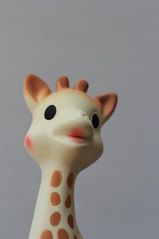 Giraffe, Baby, Toy, Sophy, Rubber