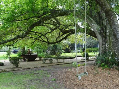 New Orleans, Garden, Swing, Tree, Southern, America