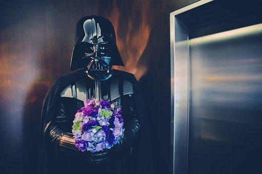 Star Wars, Flower, Soldier, Dark, Darth Vader, Wedding