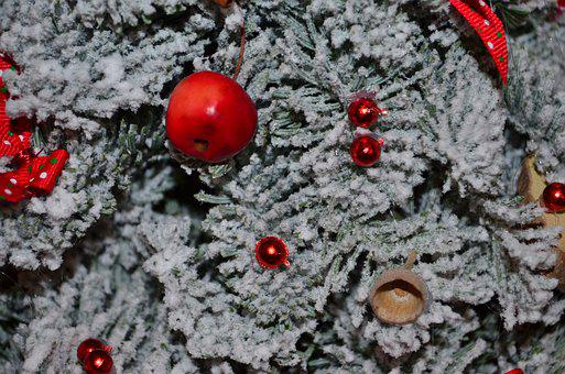 Christmas, Winter, Holiday, Xmas, Christmas Trees