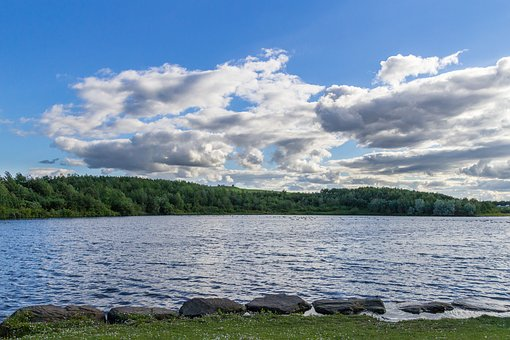 Lake, Clouds, Forest, Landscapes, Cloudy, Water, Park
