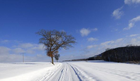 Snow, Landscape, Winter, Nature, Winter Landscape