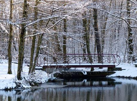 Winter, Snow, Trees, Pond, Bridge, Snowy, White, Nature