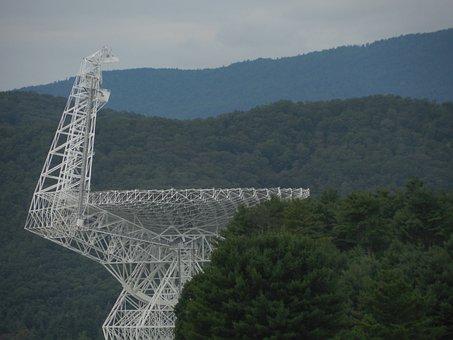 Trees, Radio Telescope, Radio, Telescope, Sky