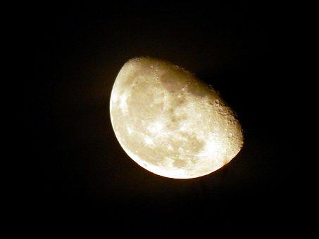 Moon, Luna, Sky, Night, Astronomy, Harvest Moon, Space