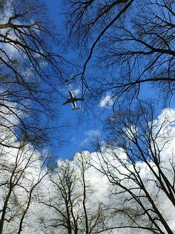 Aircraft, Sky, Clouds, Trees, Wing, Blue, Aesthetic