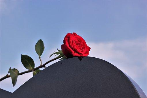 Red Rose, Heart Gravestone, Love, Missing, Black Marble