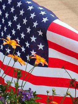 American Flag, Summer Flowers, Summer, Flag, American