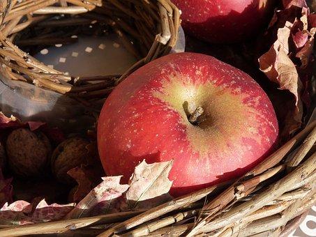Apple, Red, Autumn, Basket, Ripe, Late Summer, Deco