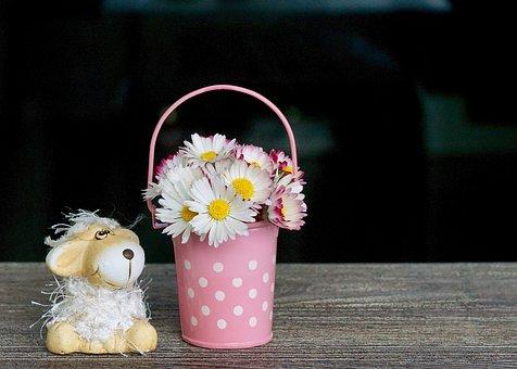 Decoration, Daisy, Spring, Emotion, Feelings, Luck