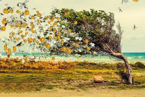 Tree, Fantasy, Flowers, Butterflies, Roses, Wind, Magic