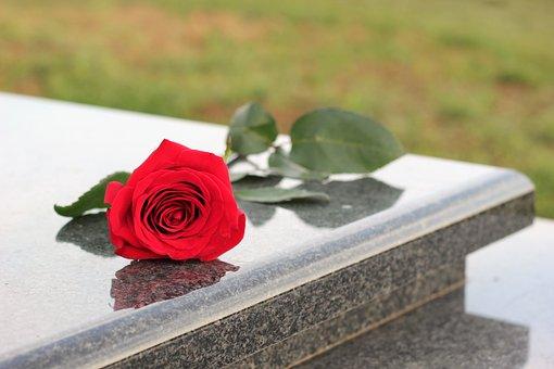 Red Rose, Grey Marble, Gravestone, Grave, Symbol, Love
