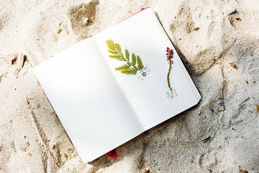 Beach, Coast, Craft, Diary, Flower, Hobby, Holidays