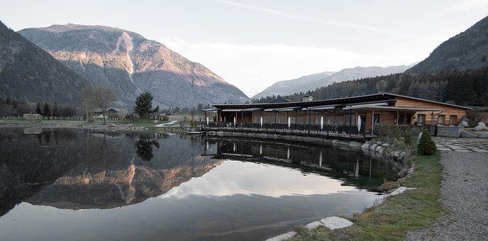 Lake, Pond, Lake View, Web, Fish, Fishing Pond, Nature