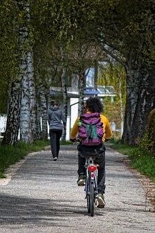 Cyclists, Away, Cycle Path, Cycling, Bike, Leisure
