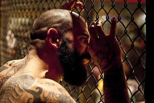 Mma, Network, Cage, Tattoos, Beard, People, Person