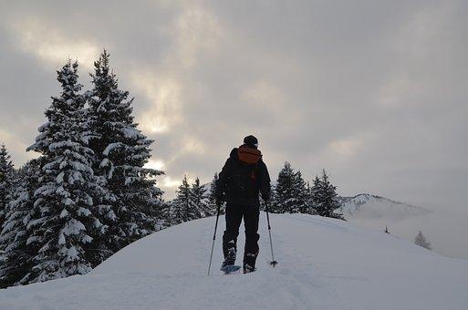 Snowshoeing, Hiking, Snow, Winter, Hike, Trekking