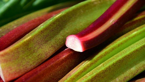 Rhubarb, Green, Garden, Vegetables Rhabarber, Red, Crop