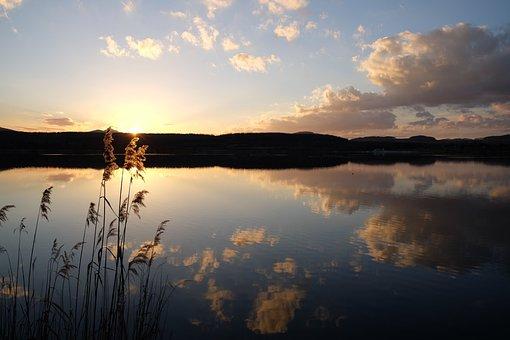 Mirroring, Mirror, Lake, Olbersderfersee, Zittau