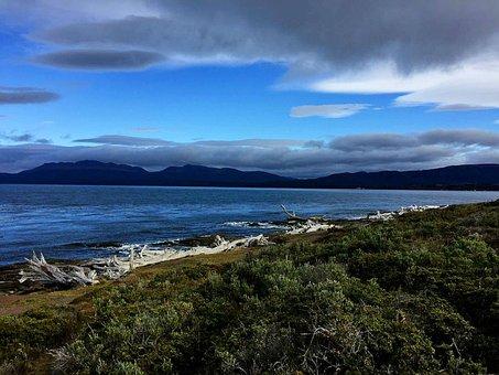 Punta Arenas, Chile, Beach, Landscape