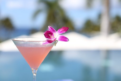 Cocktail, May Day, Labor Day, Hawaii
