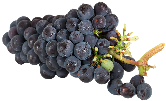 Grapes, Isolated, Fruit, Food, Healthy, Eat