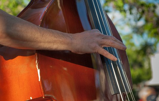 Musician, Double Bass, Instrument, Music