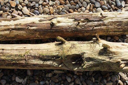 Logs, Moss, Wood, Tree, Old, Nature, Texture, Bark