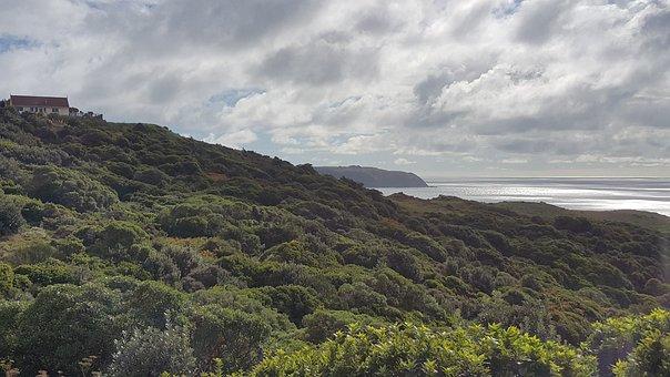 Karehana, Bay, Wellington