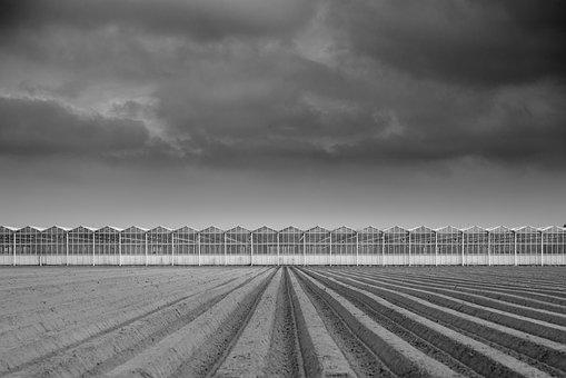 Plowed, Field, Greenhouse, Dark, Sky, Agriculture, Farm