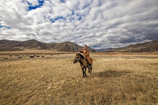 Late Autumn, Meadow, Nomad, Horse, Bogart Village