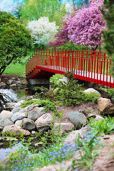Spring, Bridge, Pink, Red, Flowering Trees, Pink Trees