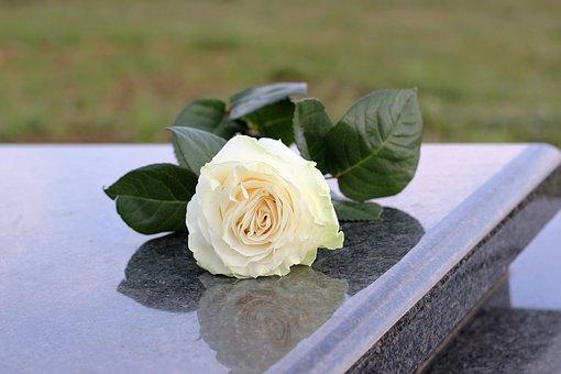 White Rose, Purity, Grey Marble, Gravestone, Grave