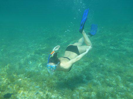 Diving, Snorkeling, Nature, Water, Sea, Beach