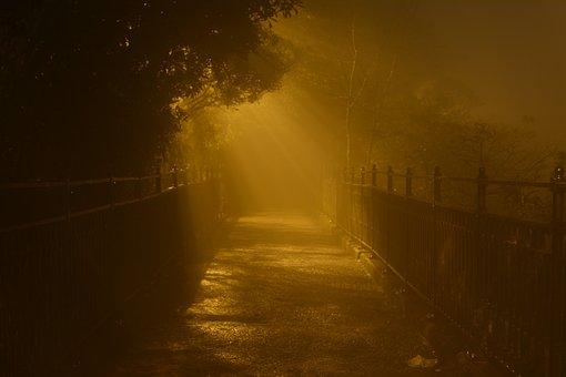 Night, Hong Kong, Light, Foggy, Victoria, Peak, City