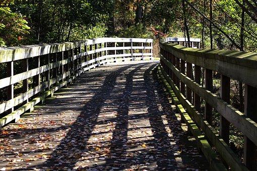 Fall, Wooden Bridge, Nature, Scenic, Leaves, Bridge